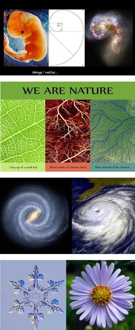 swiadomosc duchowosc i nauka fizyka kwantowa