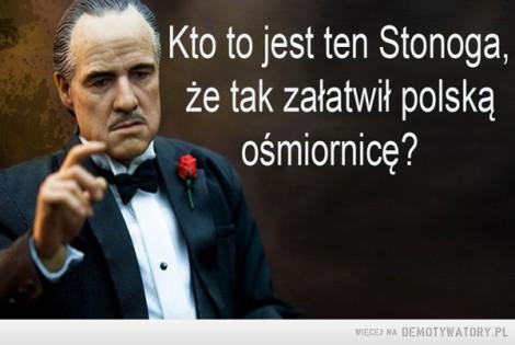 Zbigniew Stonoga nowe akta i nagrania
