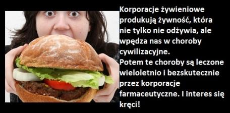 fast food szkodliwość