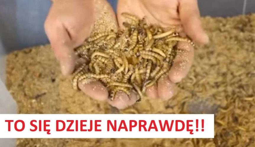 BRUD, SMRÓD I ROBACTWO OBOK PACJENTÓW W POLSKICH SZPITALACH! TO NIE DOPOMYŚLENIA!